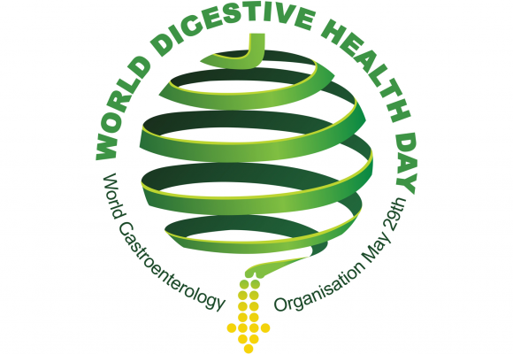Microbiota Intestinal: tema del año 2014