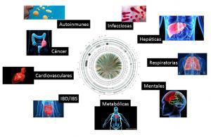 Figura 2. Las disbiosis bacterianas se han relacionado al menos con 105 enfermedades